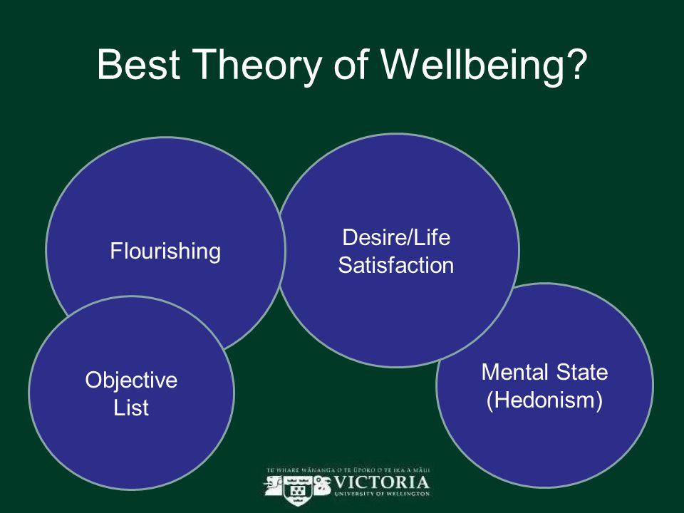 Best Theory of Wellbeing.