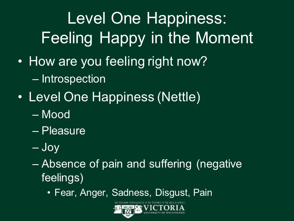 Level One Happiness: Feeling Happy in the Moment How are you feeling right now.
