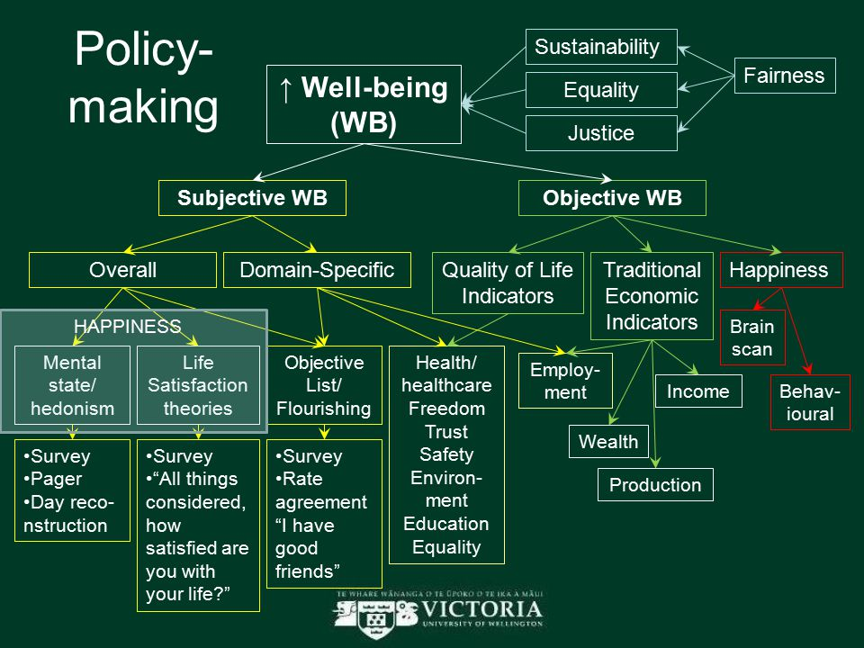 Policy- making ↑ Well-being (WB) Fairness Sustainability Equality Subjective WBObjective WB OverallDomain-Specific Mental state/ hedonism Life Satisfaction theories Objective List/ Flourishing Quality of Life Indicators Traditional Economic Indicators Health/ healthcare Freedom Trust Safety Environ- ment Education Equality Production Income Employ- ment Justice Wealth Survey Pager Day reco- nstruction Survey All things considered, how satisfied are you with your life Survey Rate agreement I have good friends HAPPINESS Happiness Brain scan Behav- ioural
