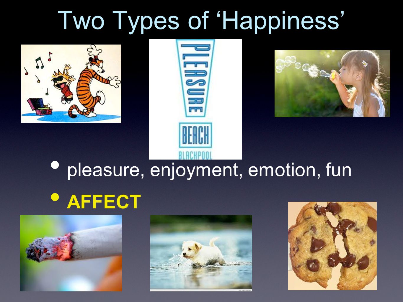 Two Types of 'Happiness' pleasure, enjoyment, emotion, fun AFFECT