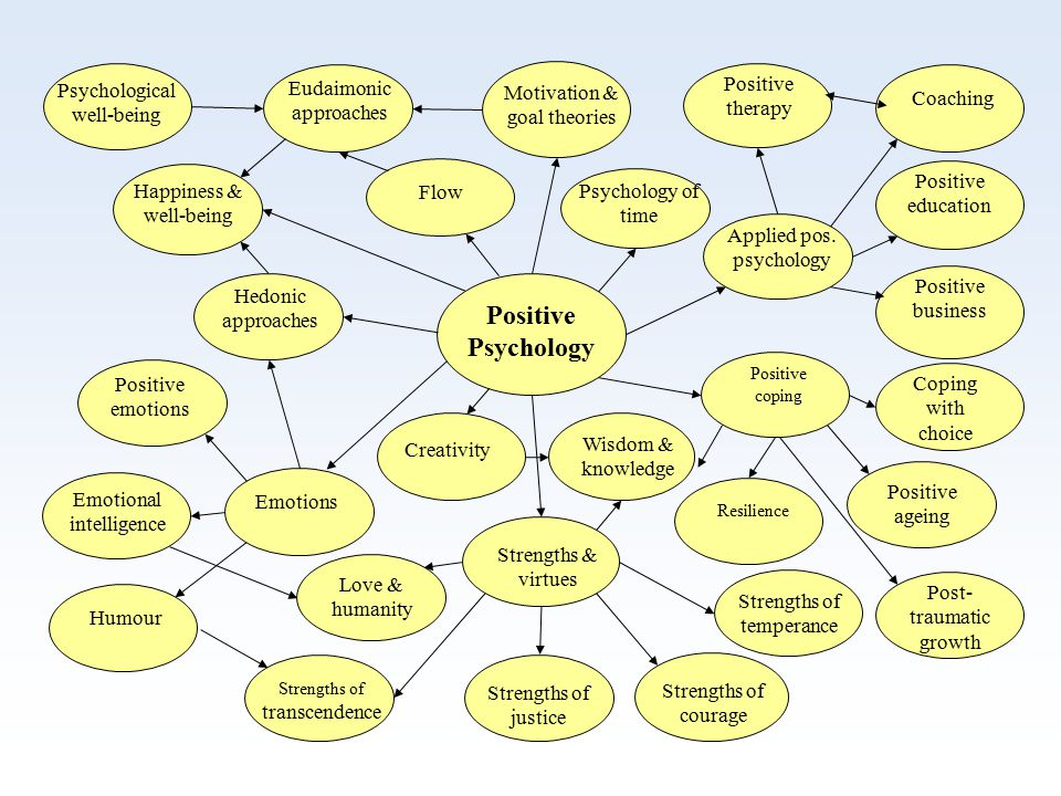 Positive coping Motivation & goal theories Applied pos.