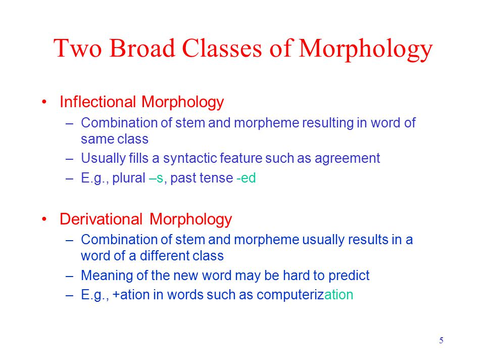 5 Two Broad Classes of Morphology Inflectional Morphology –Combination of stem and morpheme resulting in word of same class –Usually fills a syntactic