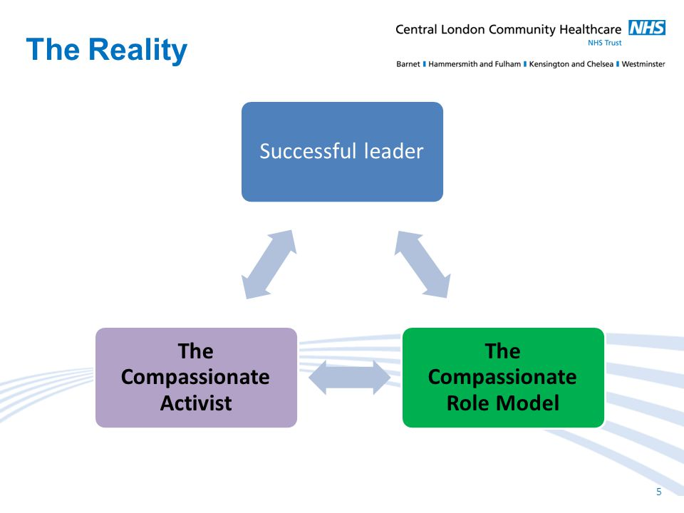 Successful leader The Compassionate Role Model The Compassionate Activist The Reality 5