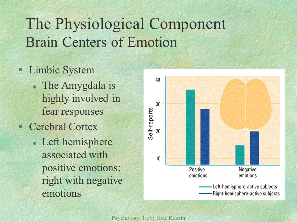 Psychology, 4/e by Saul Kassin ©2004 Prentice Hall The Physiological Component Brain Centers of Emotion §Limbic System l The Amygdala is highly involv