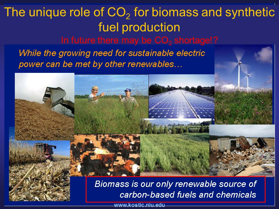The unique role of CO 2 for biomass and synthetic fuel production In future there may be CO 2 shortage!
