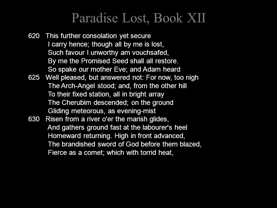 Paradise Lost, Book XII 620 This further consolation yet secure I carry hence; though all by me is lost, Such favour I unworthy am vouchsafed, By me t