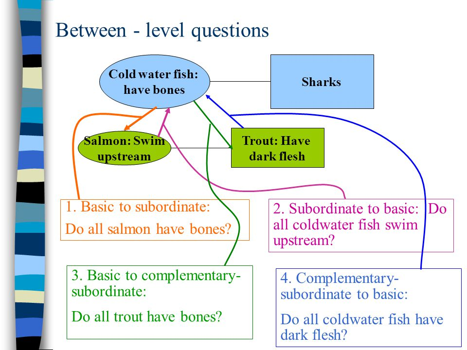 Between - level questions Cold water fish: have bones Sharks Salmon: Swim upstream Trout: Have dark flesh 1. Basic to subordinate: Do all salmon have