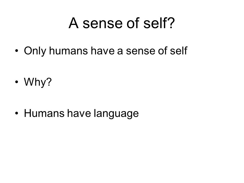 A sense of self? Only humans have a sense of self Why? Humans have language