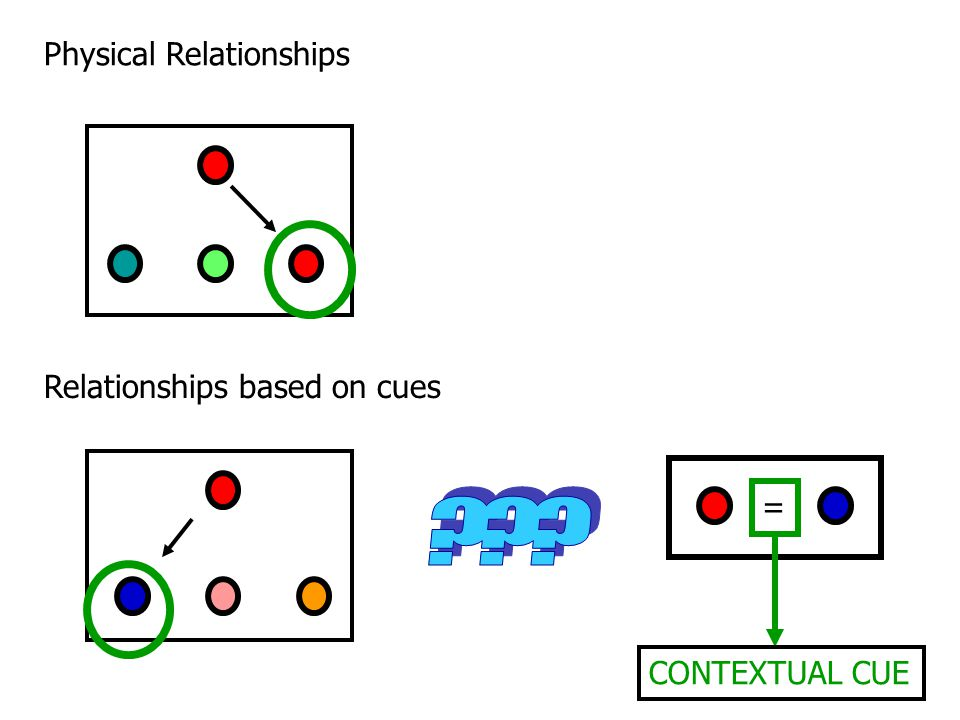 Relationships based on cues Physical Relationships = CONTEXTUAL CUE