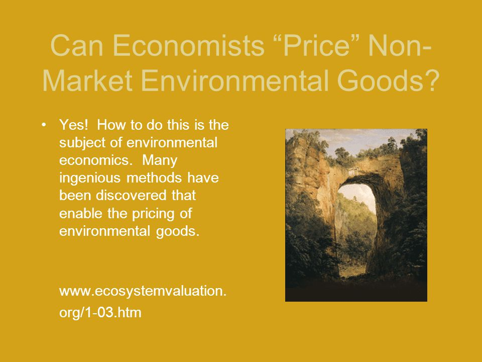 "Can Economists ""Price"" Non- Market Environmental Goods? Yes! How to do this is the subject of environmental economics. Many ingenious methods have bee"