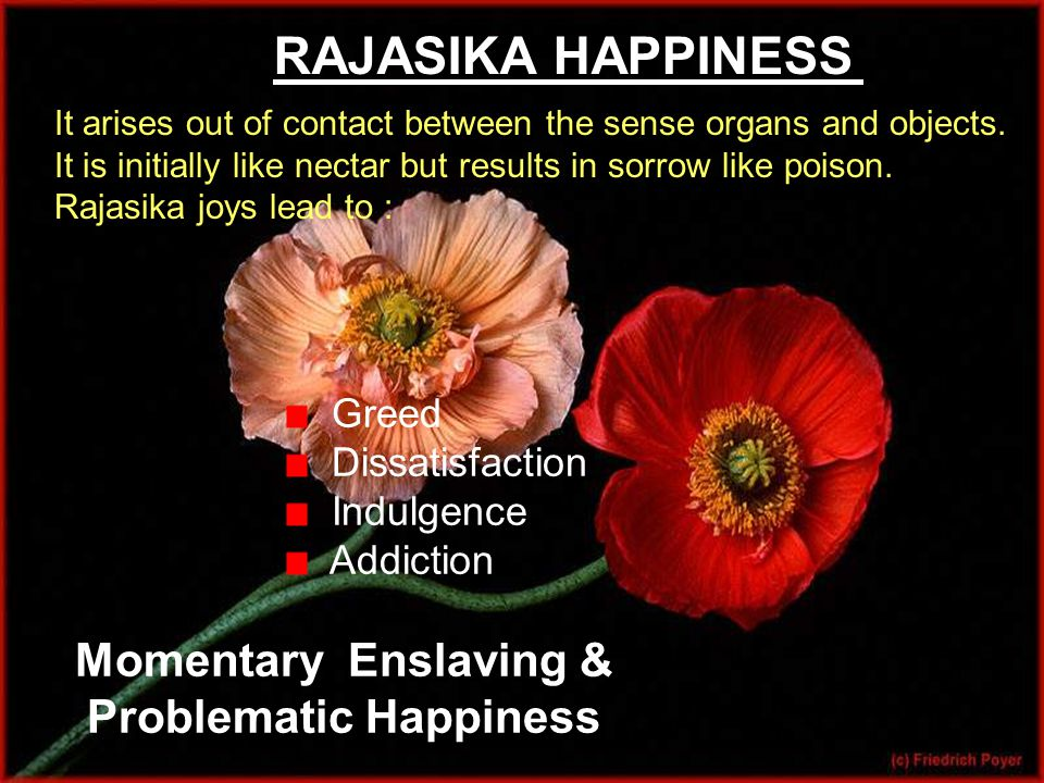RAJASIKA HAPPINESS It arises out of contact between the sense organs and objects.