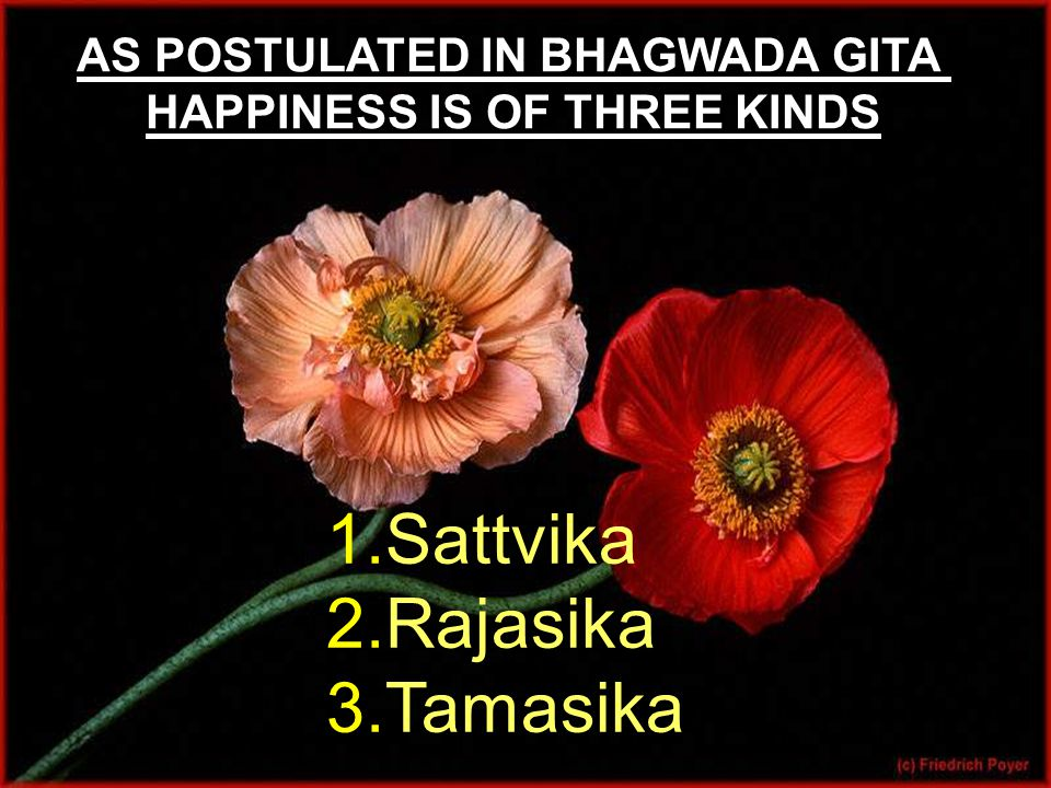 AS POSTULATED IN BHAGWADA GITA HAPPINESS IS OF THREE KINDS 1.Sattvika 2.Rajasika 3.Tamasika