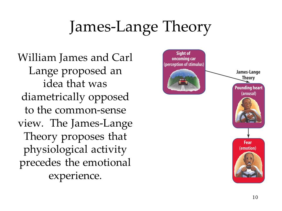 10 James-Lange Theory William James and Carl Lange proposed an idea that was diametrically opposed to the common-sense view. The James-Lange Theory pr