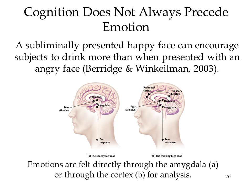 20 Cognition Does Not Always Precede Emotion A subliminally presented happy face can encourage subjects to drink more than when presented with an angry face (Berridge & Winkeilman, 2003).