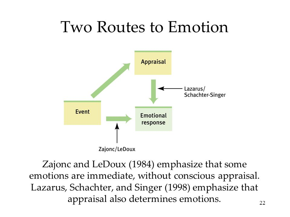 22 Two Routes to Emotion Zajonc and LeDoux (1984) emphasize that some emotions are immediate, without conscious appraisal. Lazarus, Schachter, and Sin