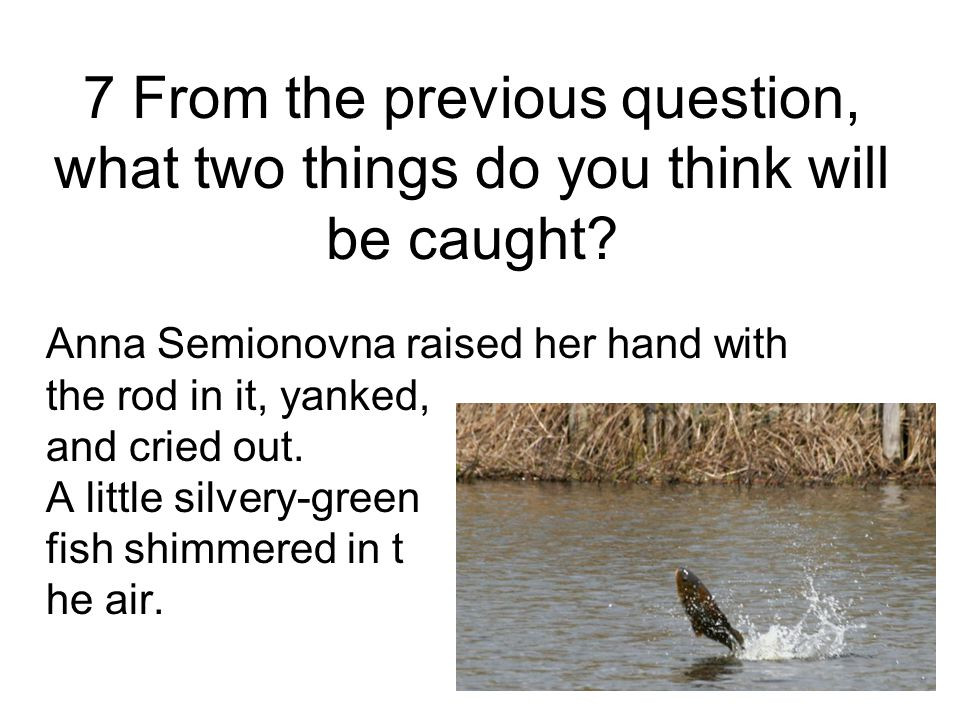 7 From the previous question, what two things do you think will be caught.