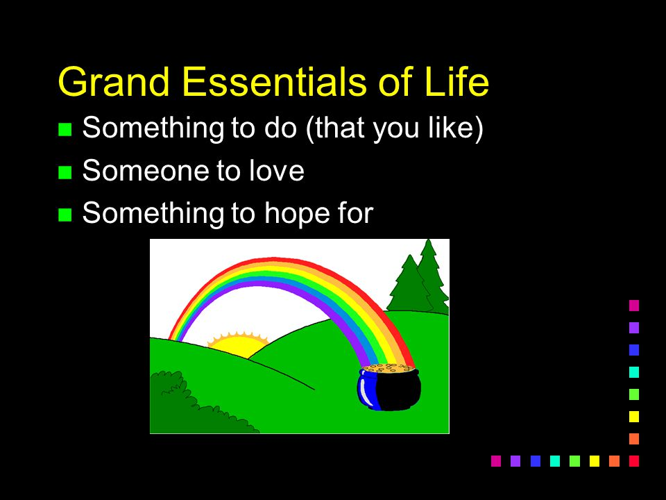 Grand Essentials of Life n Something to do (that you like) n Someone to love n Something to hope for