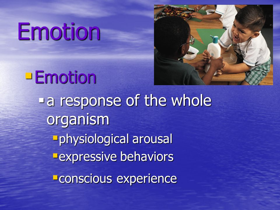 Catharsis Hypothesis Venting anger through action or fantasy ---- achieves an emotional release or catharsis. Opposing Theory-- Expressing anger breeds more anger, and through reinforcement it is habit-forming.