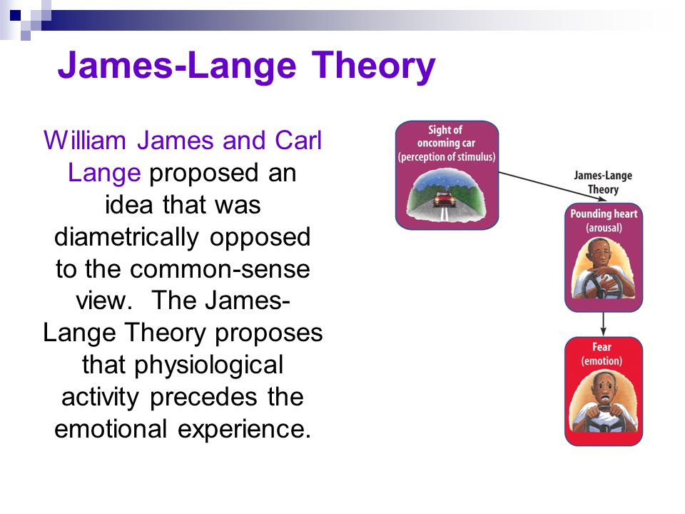 Cannon-Bard Theory Walter Cannon and Phillip Bard questioned the James- Lange Theory and proposed that an emotion-triggering stimulus and the body s arousal take place simultaneously.