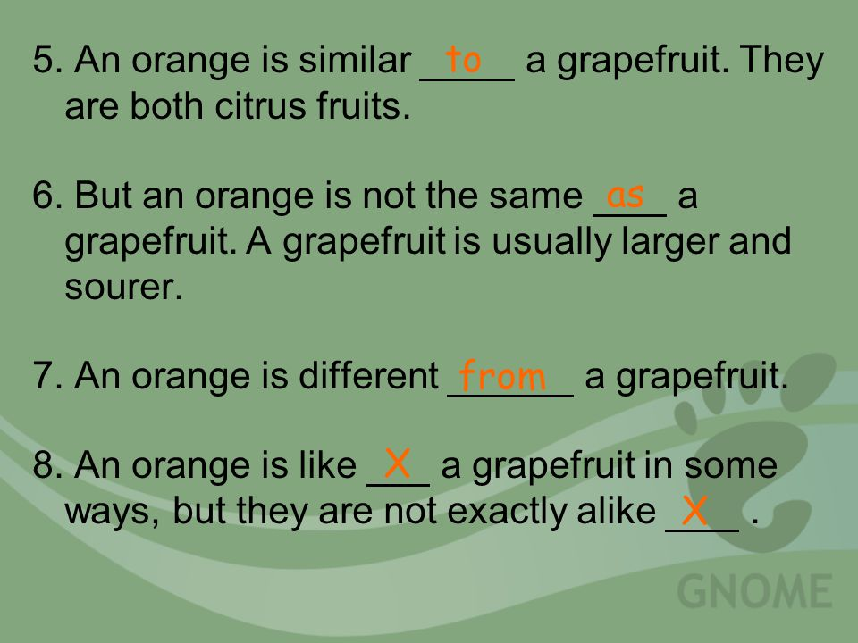 5. An orange is similar a grapefruit. They are both citrus fruits.