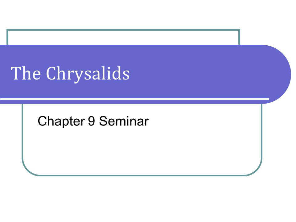 The Chrysalids Chapter 9 Seminar