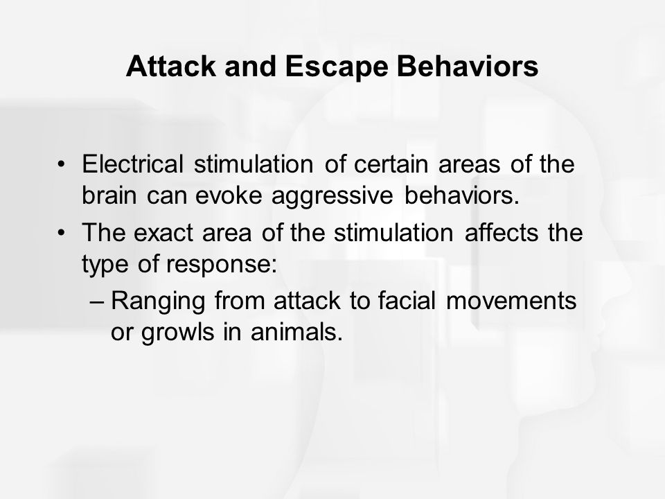 Attack and Escape Behaviors Electrical stimulation of certain areas of the brain can evoke aggressive behaviors.
