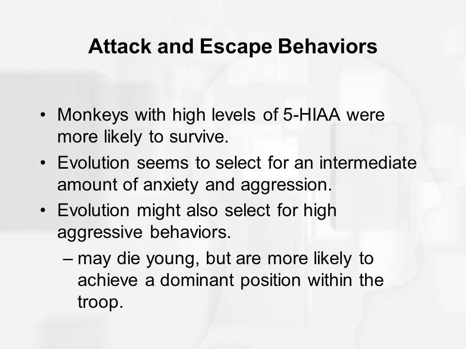 Attack and Escape Behaviors Monkeys with high levels of 5-HIAA were more likely to survive.