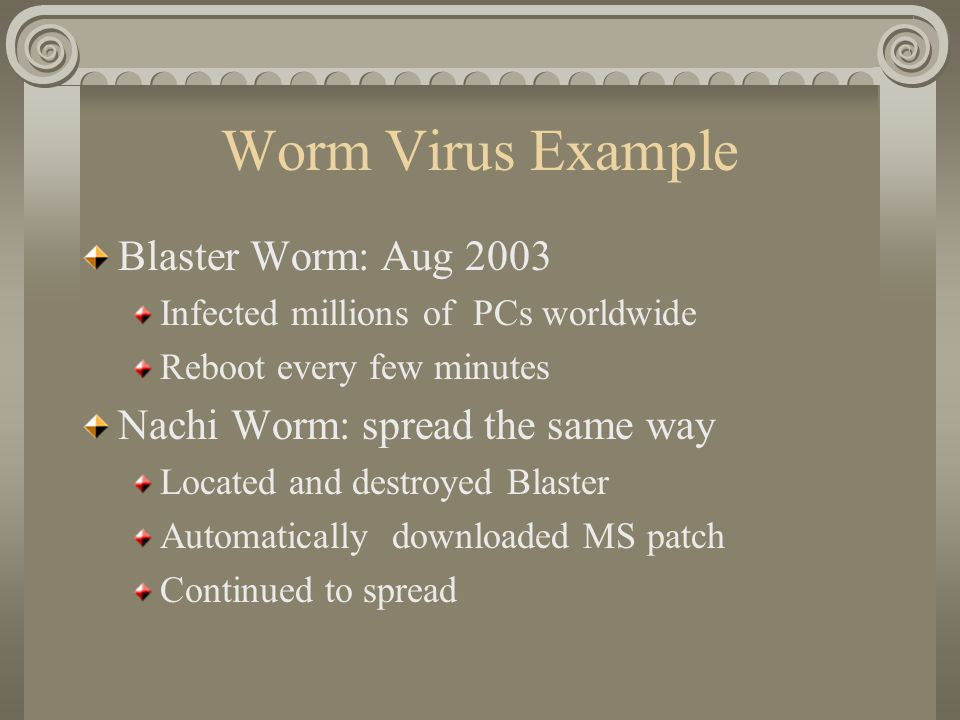 Worm Virus Example Blaster Worm: Aug 2003 Infected millions of PCs worldwide Reboot every few minutes Nachi Worm: spread the same way Located and destroyed Blaster Automatically downloaded MS patch Continued to spread
