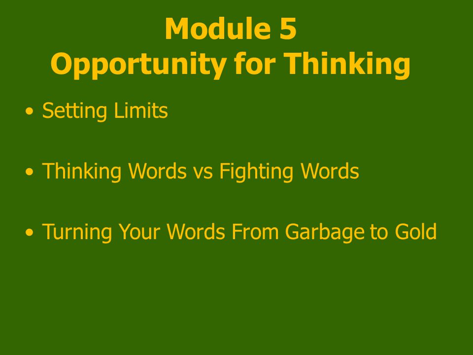 Module 5 Opportunity for Thinking Setting Limits Thinking Words vs Fighting Words Turning Your Words From Garbage to Gold
