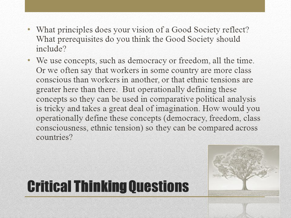 Critical Thinking Questions What principles does your vision of a Good Society reflect.