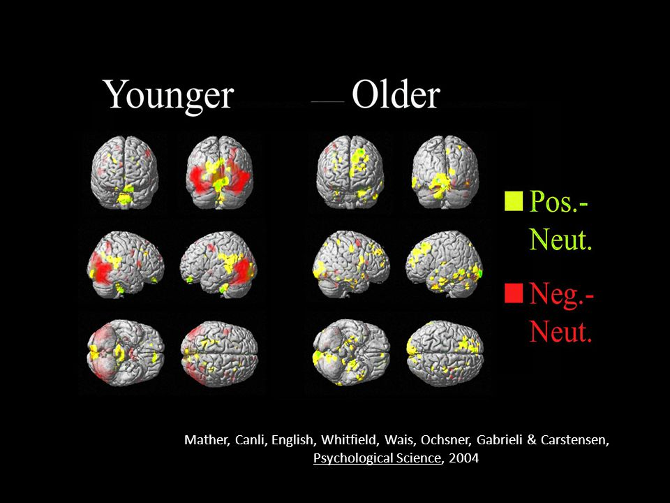 Mather, Canli, English, Whitfield, Wais, Ochsner, Gabrieli & Carstensen, Psychological Science, 2004