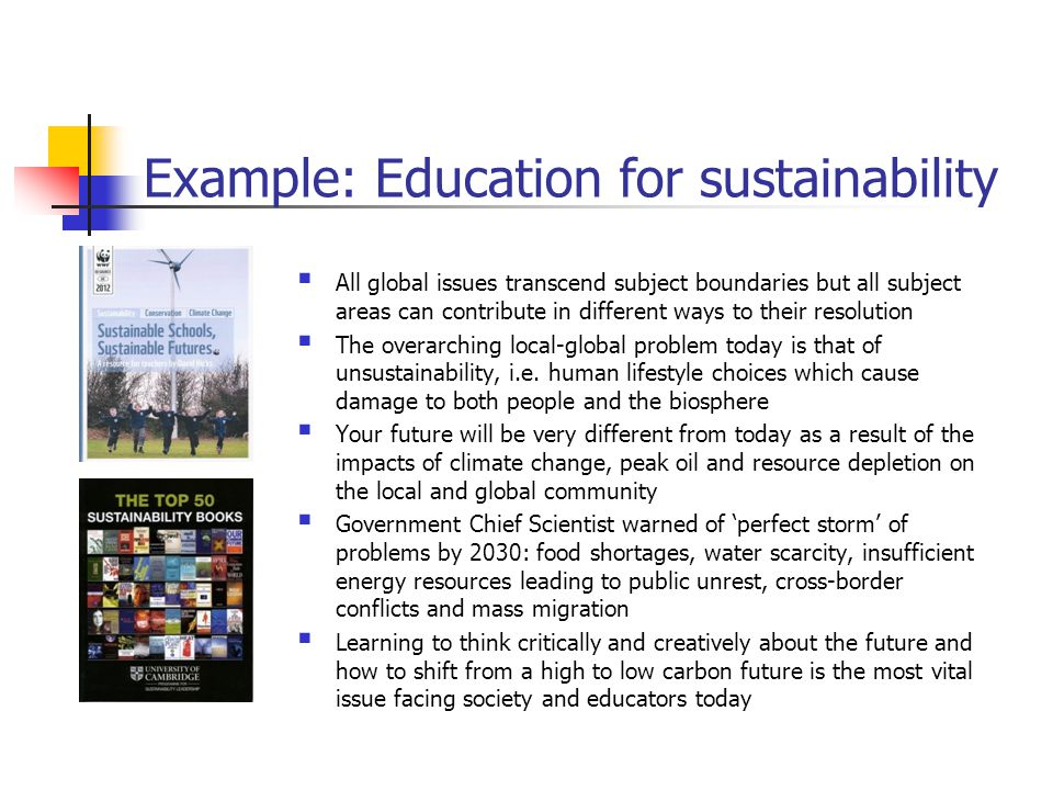 Example: Education for sustainability  All global issues transcend subject boundaries but all subject areas can contribute in different ways to their resolution  The overarching local-global problem today is that of unsustainability, i.e.