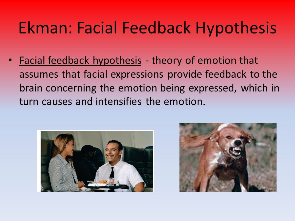 Ekman: Facial Feedback Hypothesis Facial feedback hypothesis - theory of emotion that assumes that facial expressions provide feedback to the brain co