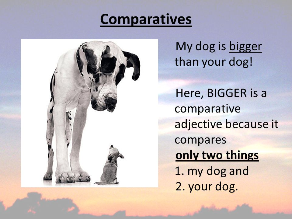 Comparatives My dog is bigger than your dog.