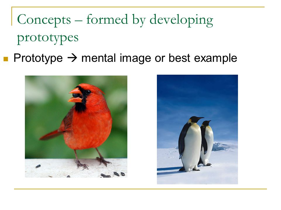 Concepts – formed by developing prototypes Prototype  mental image or best example