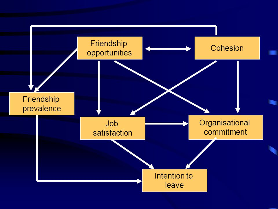 Friendship opportunities Job satisfaction Organisational commitment Intention to leave Cohesion Friendship prevalence
