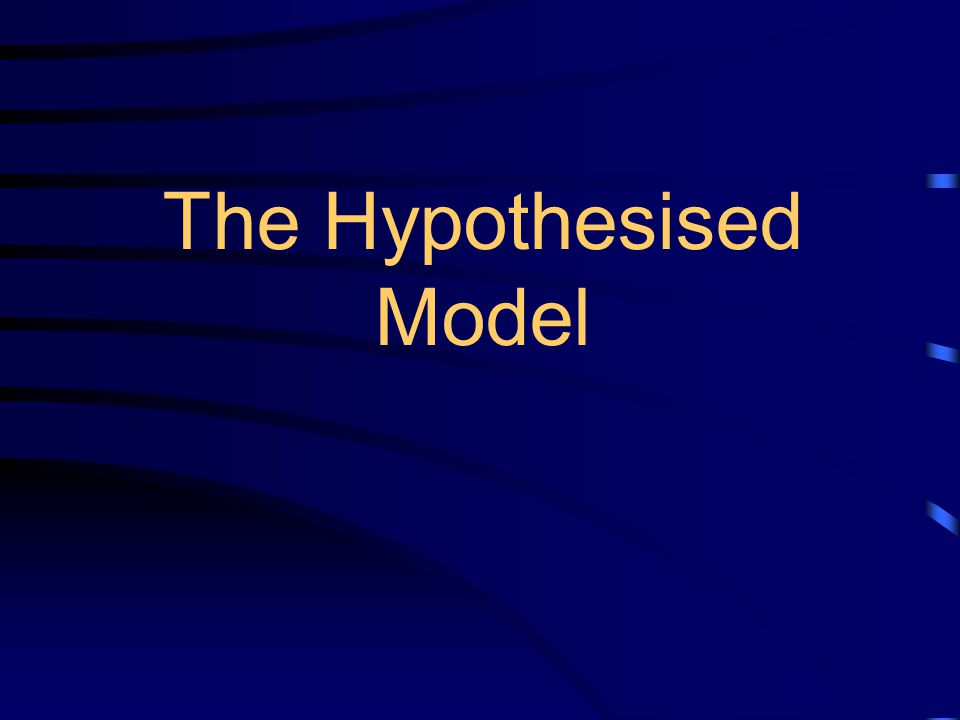 The Hypothesised Model