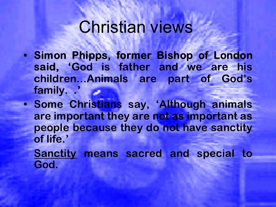 Christian views Simon Phipps, former Bishop of London said, 'God is father and we are his children...Animals are part of God's family..' Some Christians say, 'Although animals are important they are not as important as people because they do not have sanctity of life.' Sanctity means sacred and special to God.