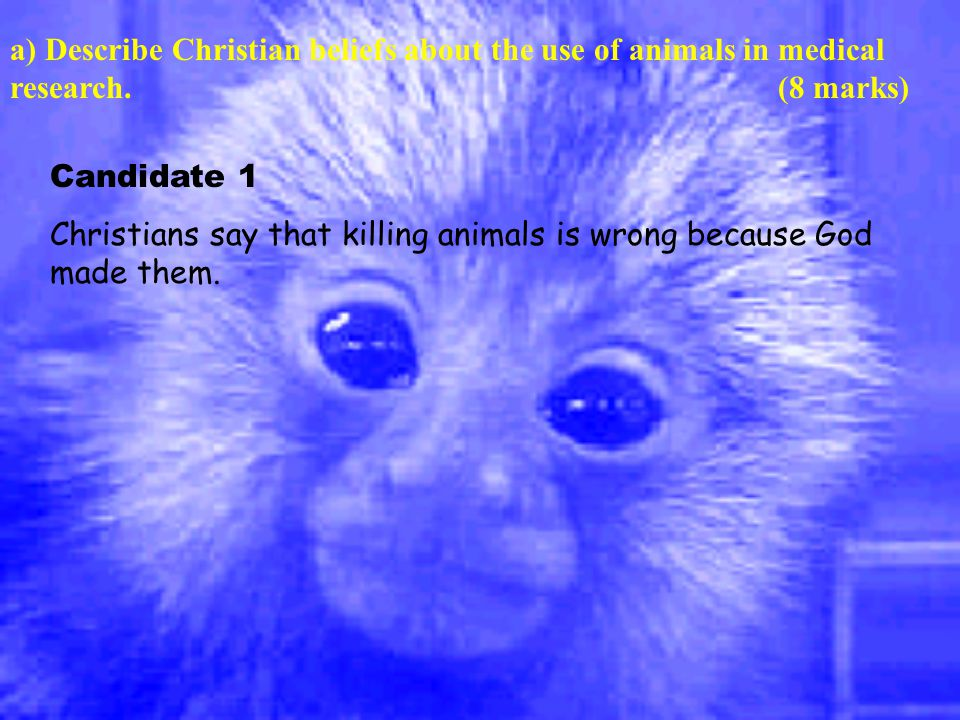 Candidate 1 Christians say that killing animals is wrong because God made them.