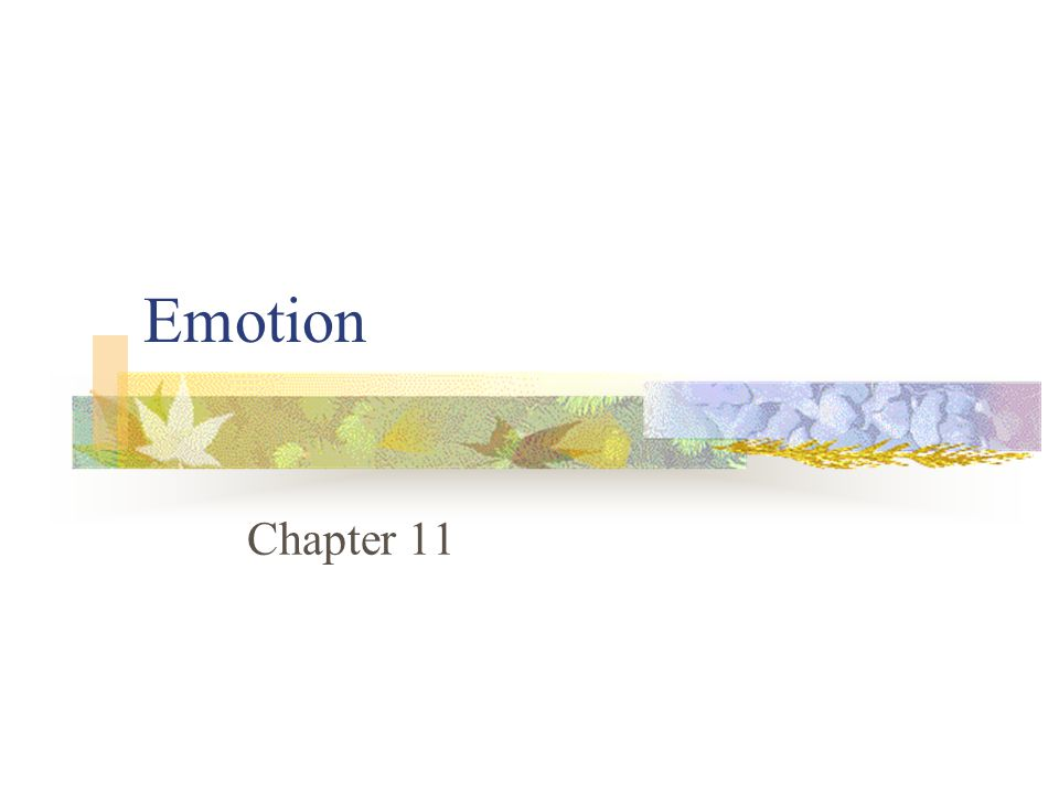 Emotion Chapter 11