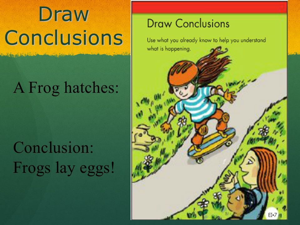 Draw Conclusions A Frog hatches: Conclusion: Frogs lay eggs!
