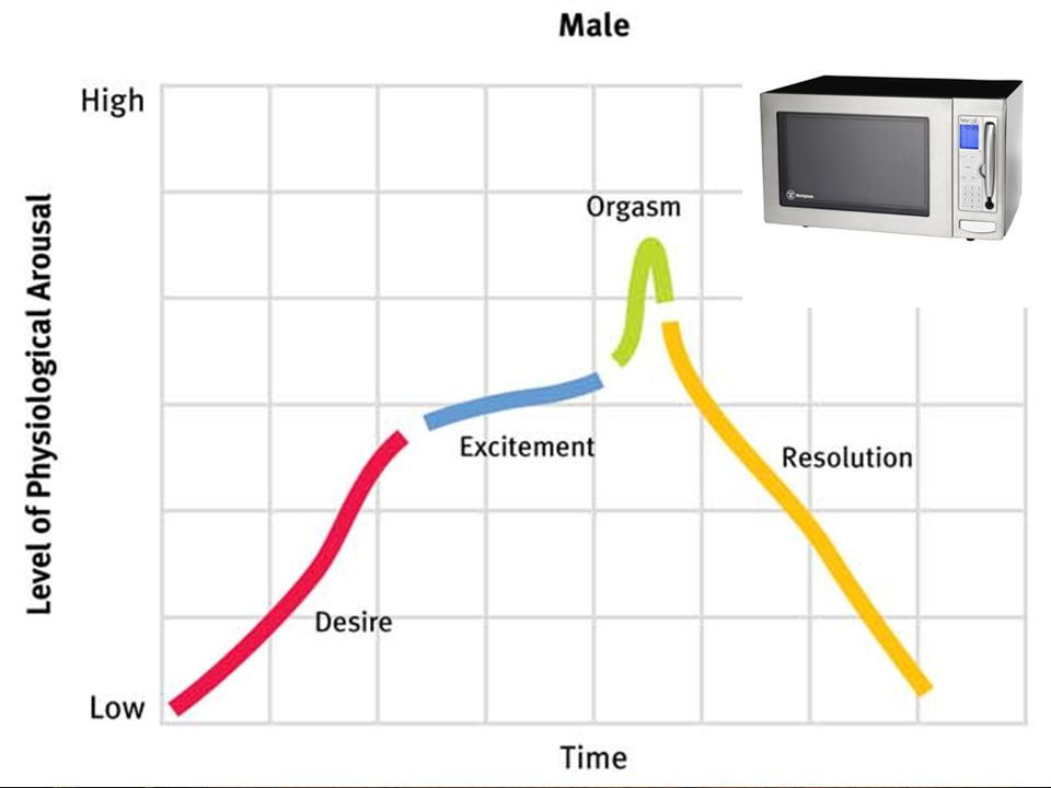 """"""" Copyright © Allyn & Bacon 2007 Sexual Response Cycle Excitement Plateau Orgasm Resolution –Refractory period (men)"""