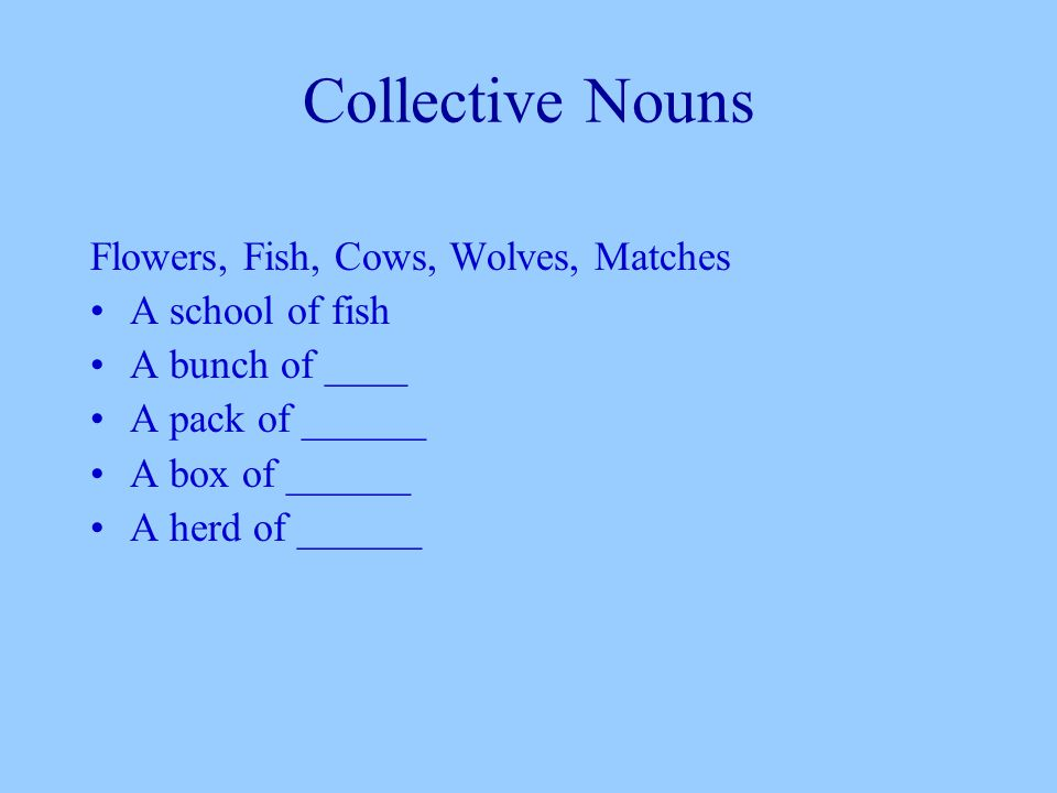 Collective Nouns Flowers, Fish, Cows, Wolves, Matches A school of fish A bunch of ____ A pack of ______ A box of ______ A herd of ______