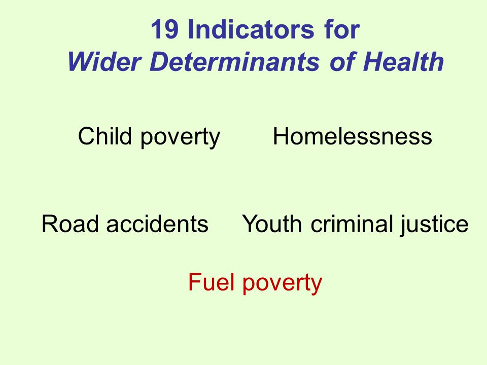 19 Indicators for Wider Determinants of Health Child povertyHomelessness Road accidents Youth criminal justice Fuel poverty