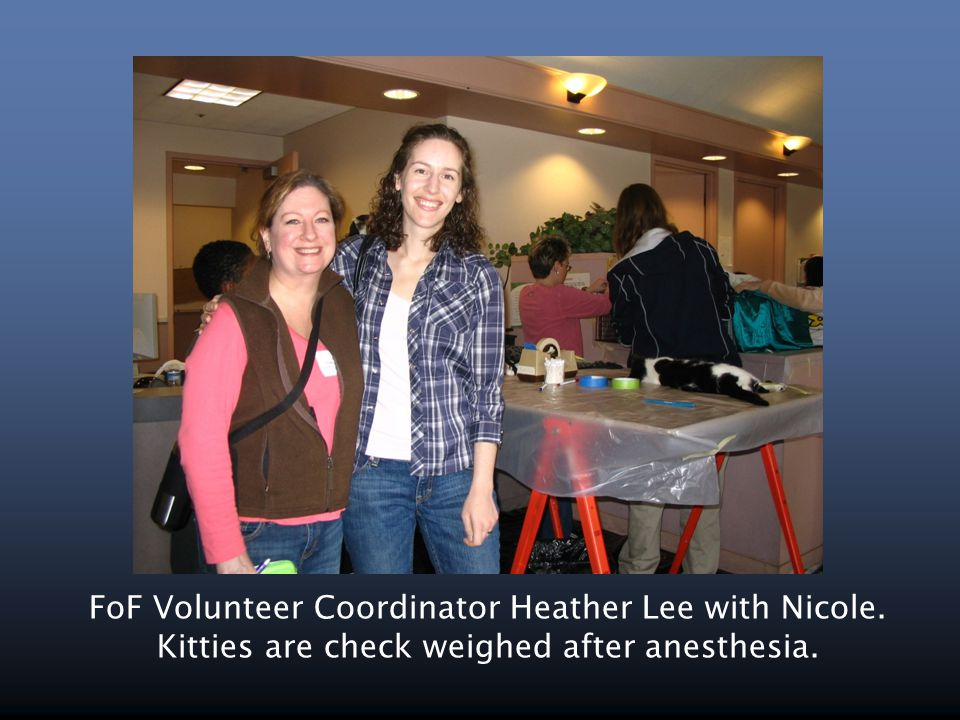 FoF Volunteer Coordinator Heather Lee with Nicole. Kitties are check weighed after anesthesia.