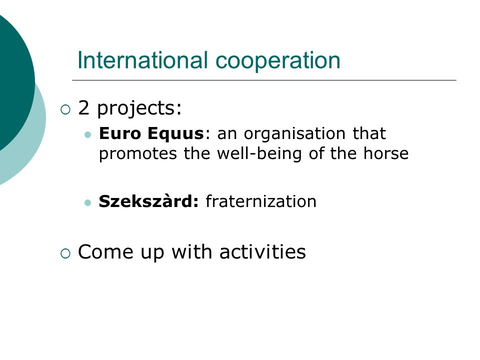 International cooperation  2 projects: Euro Equus: an organisation that promotes the well-being of the horse Szekszàrd: fraternization  Come up with activities
