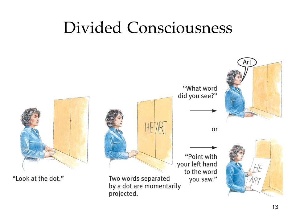 13 Divided Consciousness