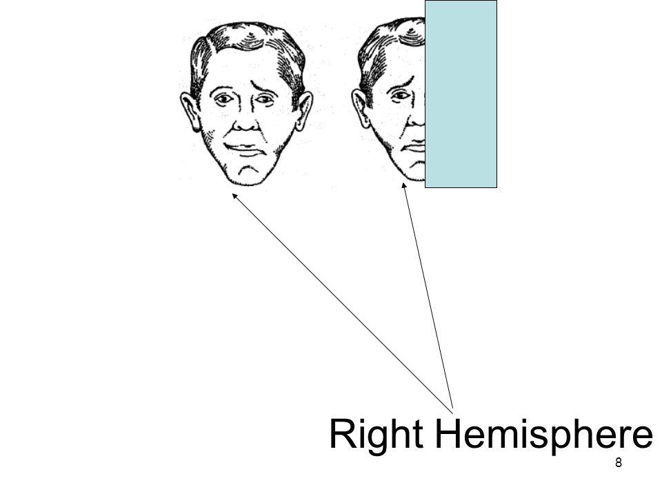 8 Right Hemisphere
