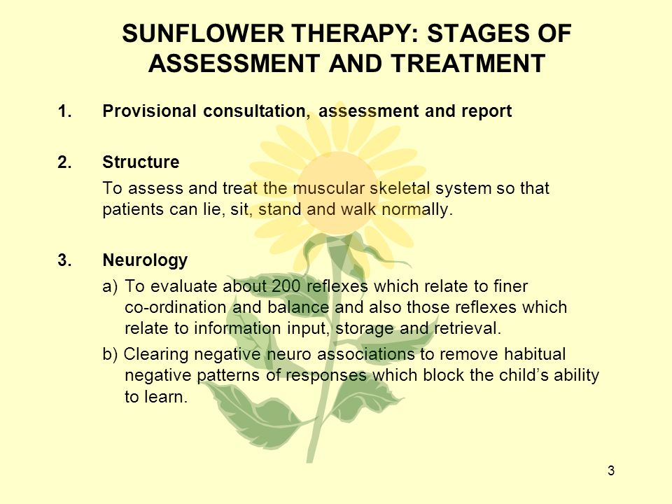 3 SUNFLOWER THERAPY: STAGES OF ASSESSMENT AND TREATMENT 1. Provisional consultation, assessment and report 2.Structure To assess and treat the muscula
