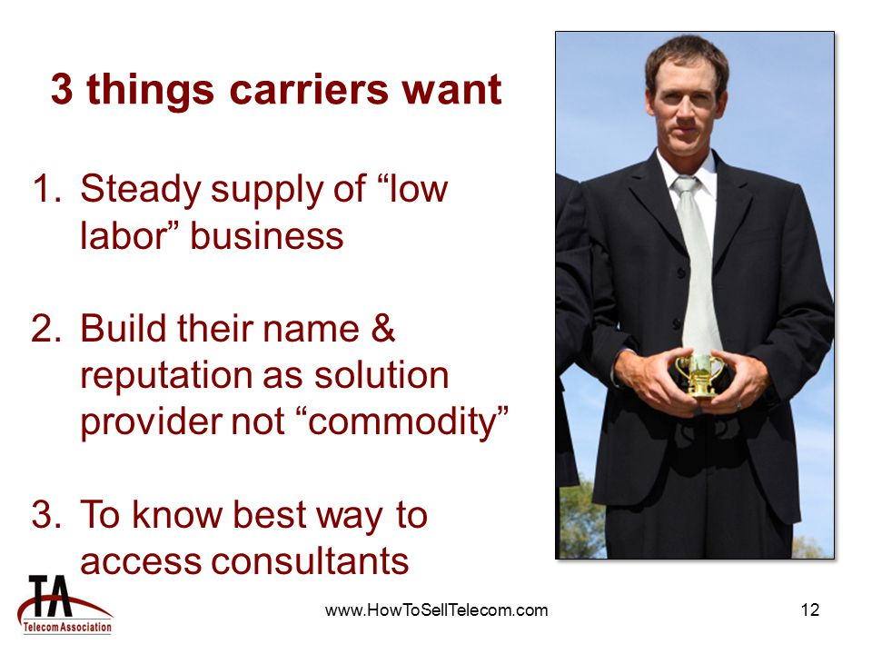 www.HowToSellTelecom.com12 3 things carriers want 1.Steady supply of low labor business 2.Build their name & reputation as solution provider not commodity 3.To know best way to access consultants